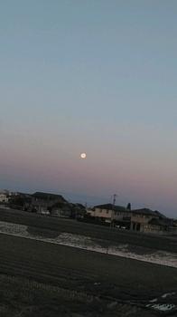 満月平成最後の.jpg